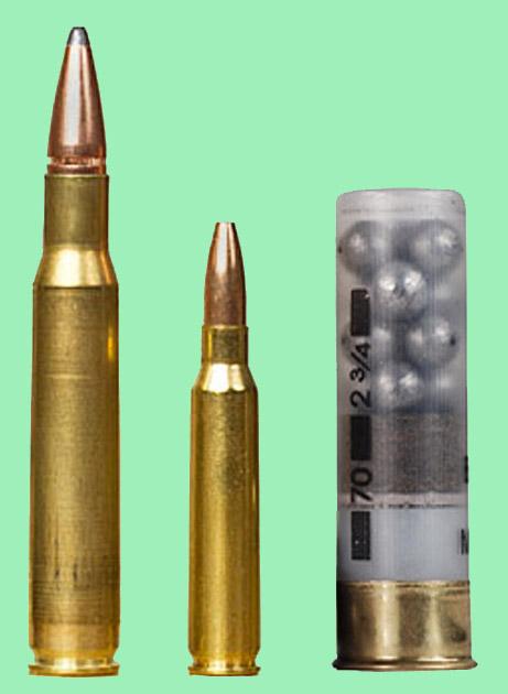 bullet compare